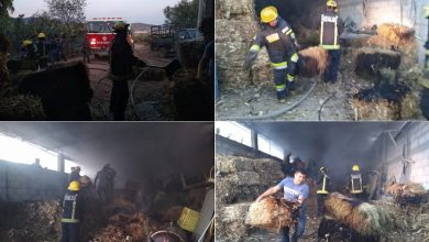Photo of Se incendian 600 pacas de paja en Hidalgo