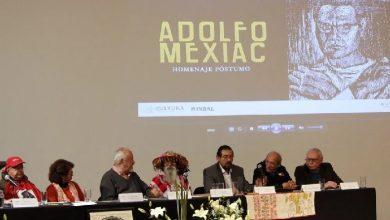 Photo of En enero abrirá la Biblioteca Adolfo Mexiac