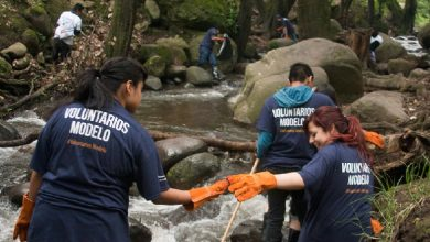 Photo of Más de 2 millones de personas se han sumado a Voluntarios Modelo
