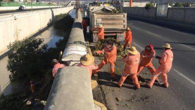 Photo of Sopot realizó trabajos de limpieza en el Río de las Avenidas en Pachuca