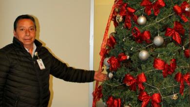 Photo of Implementan campaña para recolección de árboles navideños en Tulancingo