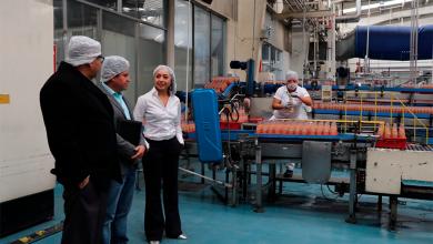 Photo of Fortalecimiento para la producción de plantas de guayaba