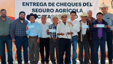 Photo of Entrega de apoyos en la Huasteca hidalguense
