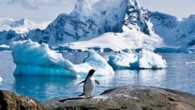 Photo of Gran desprendimiento de hielo en la Antártida