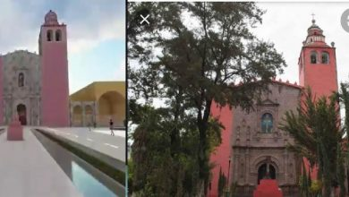 Photo of Cura de Ixmiquilpan pretende derribar decenas árboles