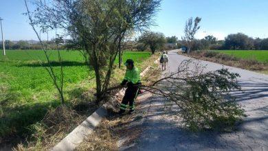 Photo of Realiza SOPOT limpieza en carreteras de Hidalgo