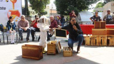 Photo of Tulancingo busca la institucionalización del Programa de Protección y Rescate de Enjambres