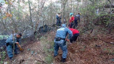 Photo of En operativo coordinado, policías y bomberos sofocan incendio forestal en Huasca