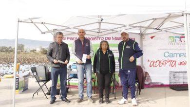 Photo of En Tulancingo primeras sanciones a dueños de caninos