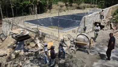 Photo of Supervisan construcción de planta de aguas residuales ecológica en Xochiatipan