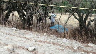 Photo of Asesinan a hombre en Tepeji del Río