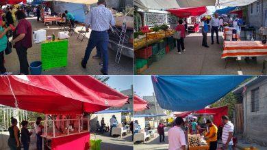 Photo of En Tula se reabren tianguis y mayoreo, solo para productos perecederos y canasta básica