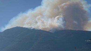 Photo of Continúa proceso para sofocar incendio en cerro de Napateco