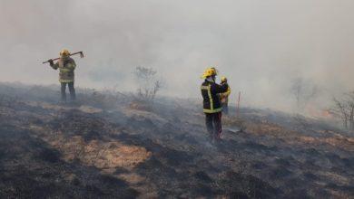 Photo of Fallece Bombero de Tulancingo tras resbalar de acantilado en cerro de Napateco