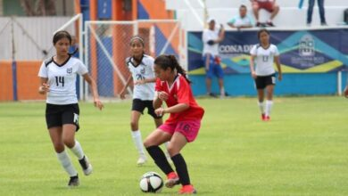Photo of Atletas entrenan vía online con su profesor correspondiente, además de recibir actividades deportivas.