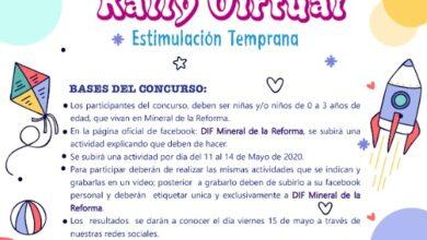 Photo of Promueve DIF de Mineral de la Reforma rally virtual de estimulación temprana