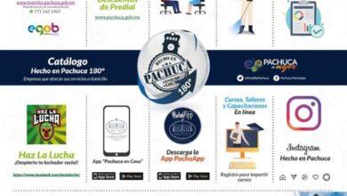 Photo of Alcaldía de Pachuca lanza «acciones en un click» en apoyo al comercio local