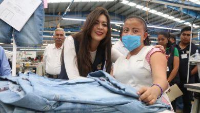 Photo of Seguridad Social, protección de la población Trabajadora y sus familias: MAET