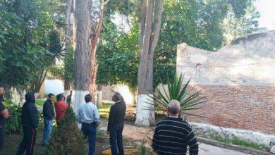 Photo of Dirección de Medio Ambiente mantiene monitoreo de arbolado en Tulancingo