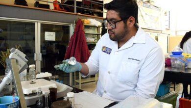 Photo of Doctorado en Ciencias en Biotecnología de la UPP obtiene el nivel 2 del PNPC del Conacyt
