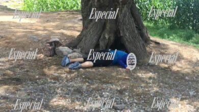 Photo of Asesinan a mujer en Mixquiahuala