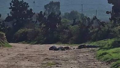 Photo of Hallan decapitados a dos hombres en los límites de Hidalgo