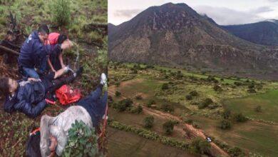 Photo of Con drones y unidad canina de Policía Estatal, localizan a excursionistas en Tepeapulco