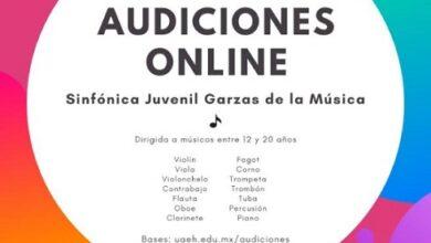 Photo of Amplía UAEH convocatoria para Orquesta Juvenil Garzas de la Música