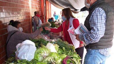 Photo of Con impulso al comercio generaremos empleos en Tasquillo: María de Jesús Chávez