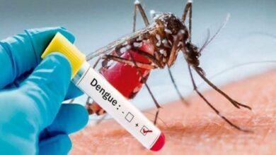 Photo of Reinfecciones por dengue son más graves: alerta ISSSTE
