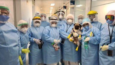 Photo of Concluye exitosa labor de Harley «El Tuerto» en 10 hospitales del ISSSTE