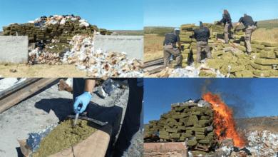Photo of Incinera Fiscalía 8 toneladas de droga