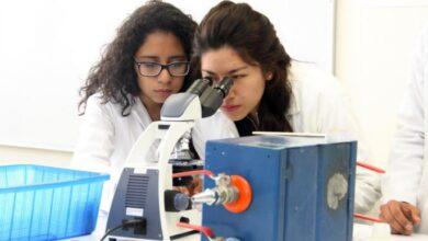Photo of Convocatoria para estudiar posgrado en UAEH enero-junio 2021