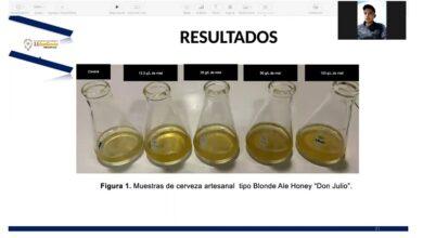 Photo of ITESA participará en Expo Ciencias Nacional con prototipo de cerveza artesanal