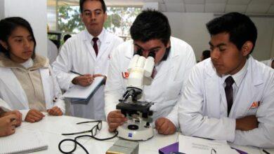 Photo of Destacan 163 egresados de UAEH por sus resultados de excelencia