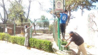 Photo of Zoológico municipal de Tulancingo es objeto de acondicionamiento